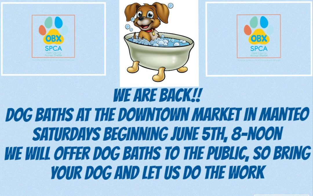 Dog Baths are back at the Downtown Market in Manteo!!