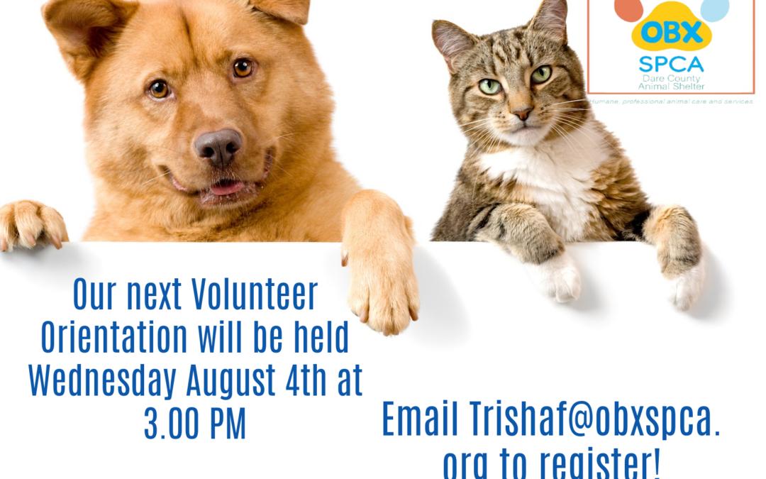 Volunteer Orientation!!