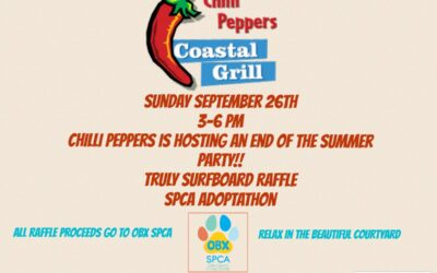 Adoptathon hosted by Chilli Peppers Coastal Grill!!